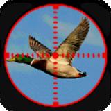 鸭狩猎3D 1.2