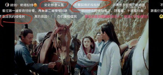 《东宫》剧实景拍摄 网友发弹幕吐槽:不要踩到我的梭梭树